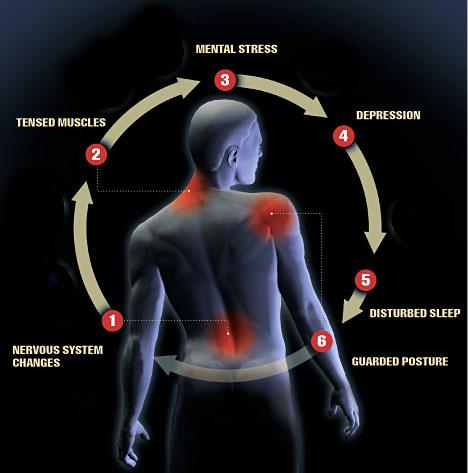 Exercising in Ankylosing Spondylitis | Fitness-pedia